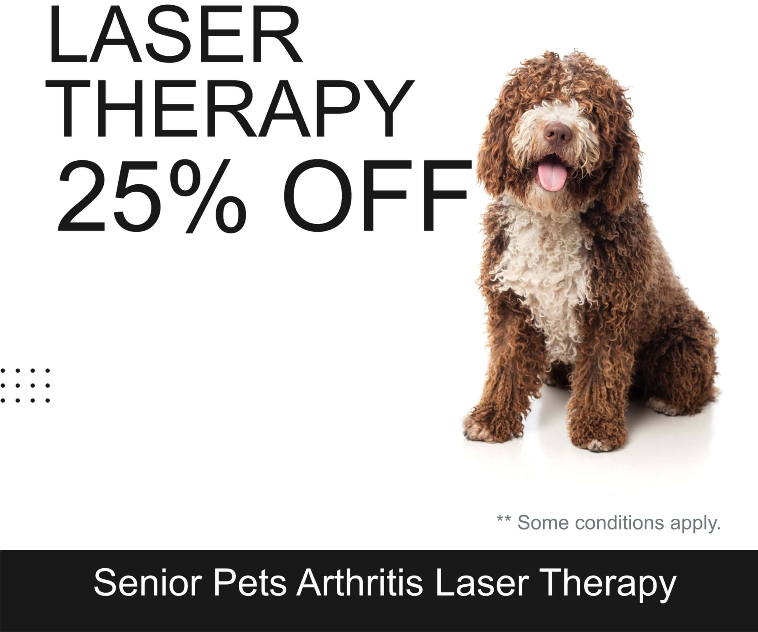 Laser Therapy 25% Off